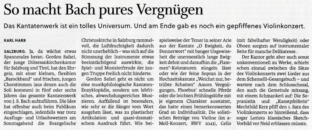 BWV IV Kritik